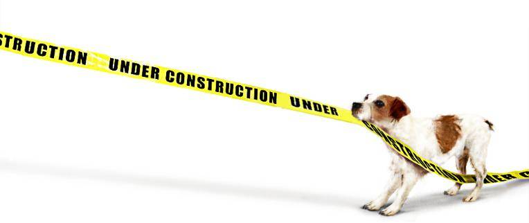 pet_shop_underConstruction